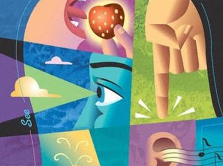 Los cinco sentidos